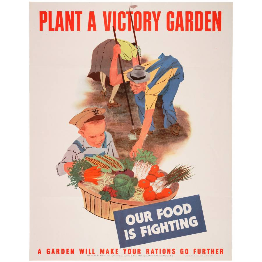 lg 513818 4344 - Planting Victory Gardens And Conserving Resources