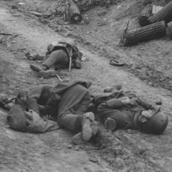 A Sunken Road Strongly Held by Machine Guns. German Dead in Foreground. Near Arras, France