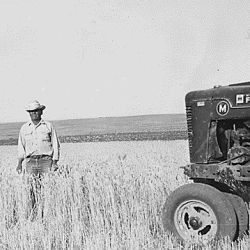 Farmer and crops at Wind River Agency