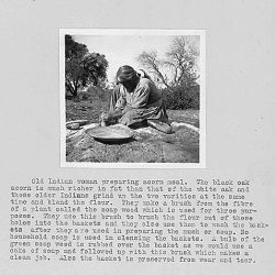 Photograph with text showing Native American woman preparing acorn meal, California. This is from a survey report of Fresno and Madera counties by L.D. Creel