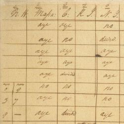 Voting Record of the Constitutional Convention