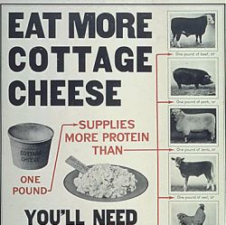 """Eat More Cottage Cheese...You"
