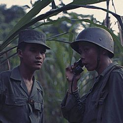 Vietnam. Vietnamese army personnel training in the jungle.