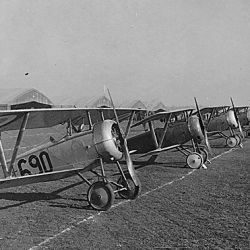 Twenty-six aeroplanes in line for inspection, aviation field, Issoudon, France