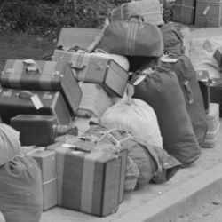 Hayward, California. Baggage of evacuees of Japanese ancestry stacked at public park as evacuation