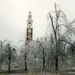 [Ice Storms] Burlington, VT, January 9, 1998 -- Ice coated trees on the University of Vermont campus. Courtesy of Vermont Department of Forests, Parks and Recreation