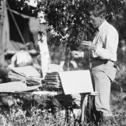 Working Over Herbarium Material at Camp on Impoverished Willow and White-Bark Birch Pole Table, P. H. Dorsett Posing