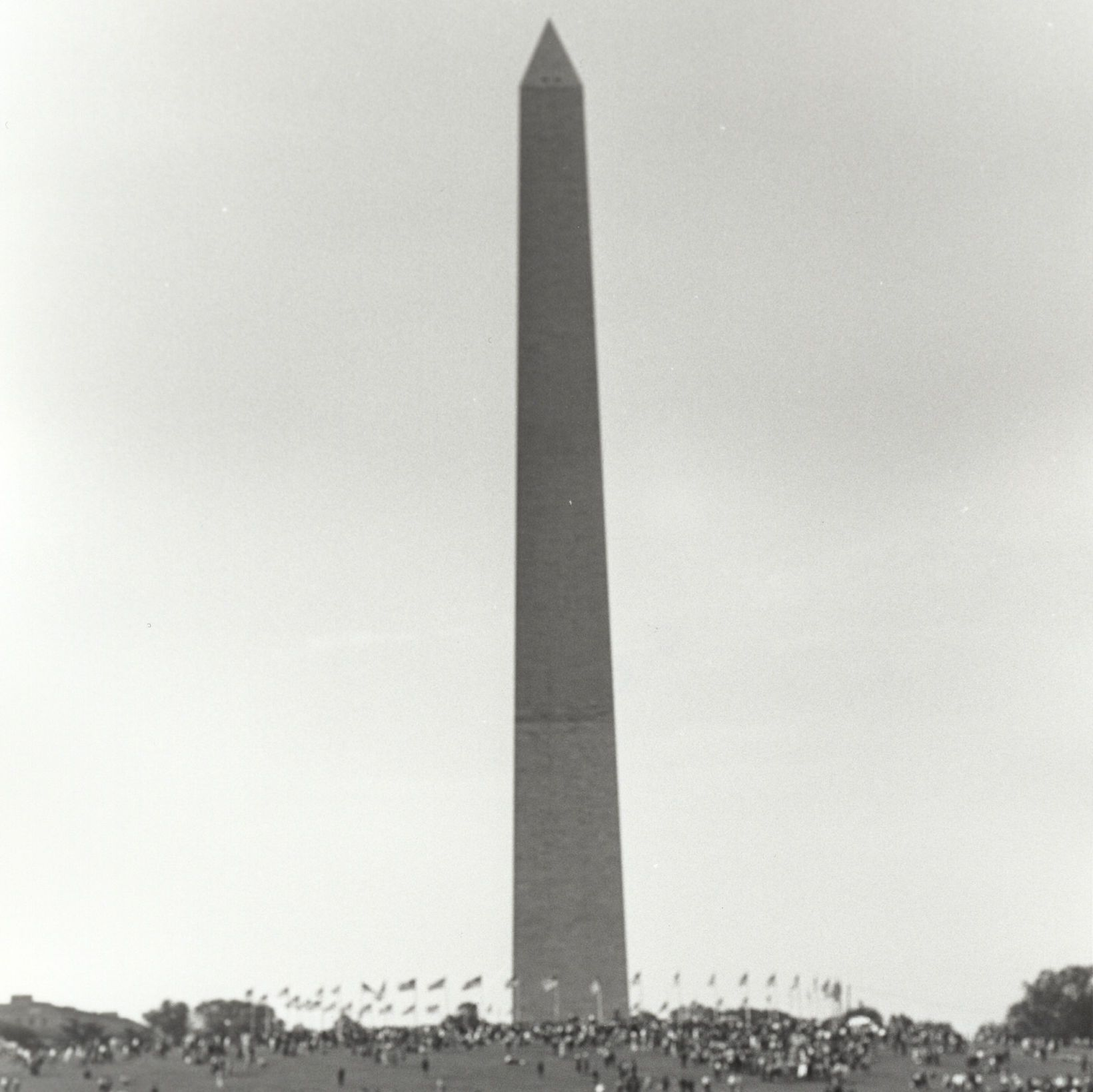 Photograph of Crowd at the Washington Monument during the March on Washington