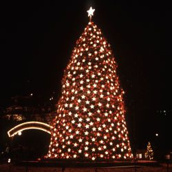 A view of the National Christmas Tree