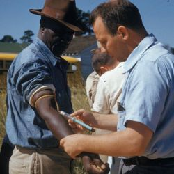 Photograph of Participants in the Tuskegee Syphilis Study
