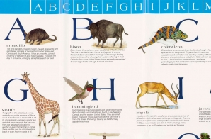 Alphabet-Animals Chart