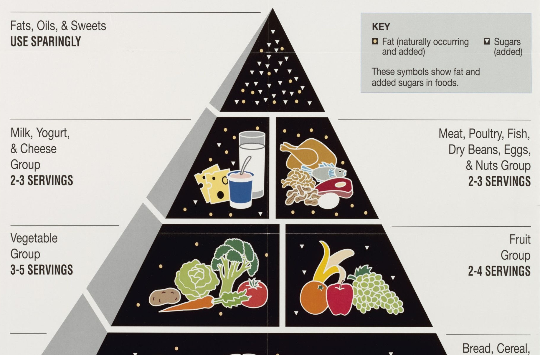 Food Guide Pyramid: A Guide to Daily Food Choices