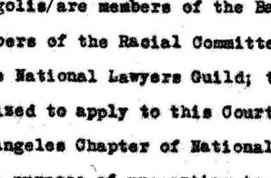 Application from the National Lawyers Guild to Appear Amicus Curiae