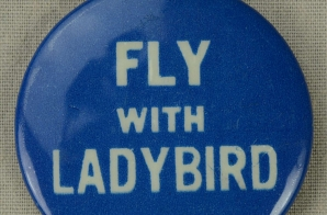 Fly with Ladybird